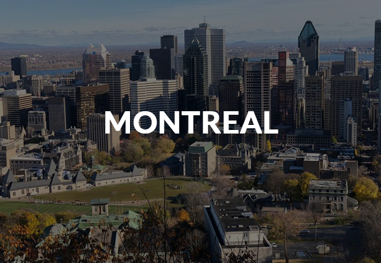 onfly in montreal